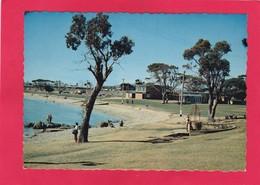 Modern Post Card Of Devonport, Tasmania, Australia..D22. - Sonstige