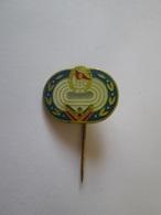UTC Daciada,Romanian Collector Badge From The 80s,size=18 X 14 Mm - Pin