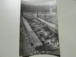 HAUT RHIN 28 E.D.F. CHANTIER D'OTTMARSHEIM VUE GENERALE VERS L'OUEST JANVIER 1950 - Ottmarsheim
