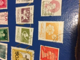 NICARAGUA FIORI OCRA - Postzegels
