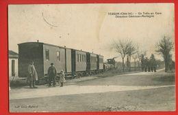 17-1601 - CHARENTE MARITIME - TESSON - Un Train En Gare - Direction Gémozac Mortagne - France