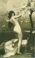 Ragazza Nuda Con Fiori Di Pesco (Sexi, Pin Up), Riproduzione B87, Reproduction - Pin-Ups