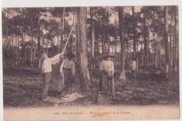 CPA - 1069. Dans Les LANDES  - Dernière Amasse De La Gemme - Autres Communes