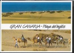 SPAGNA - GRAN CANARIA - PLAYA DEL INGLES - VIAGGIATA - Gran Canaria