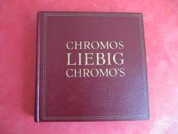 ALBUM AVEC +/- 100 CHROMOS LIEBIG. - Sets And Collections