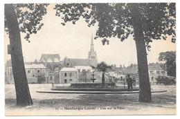 45 - Montargis - Vue Sur Le Pâtis - Ed. F.F. N° 11 - Montargis