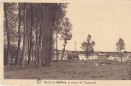 Moulin De  Balâtre Et Chemin De Tongrinnes Circulée En 1946 - Jemeppe-sur-Sambre