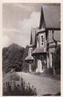 AN99 Watcombe Park, The Terrace - RPPC - Torquay