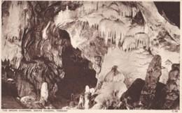 AN99 The Organ Chamber, Kents Cavern, Torquay - Torquay