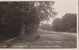 AO78 Ash Green, Loughton, Epping Forest - RPPC - England