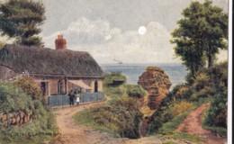 AR32 The Cottage, Ladram Bay - A.R. Quinton Textured Postcard - England
