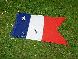PAVILLON FRANCE MARINE NATIONALE CAPITAINE De VAISSEAU CHEF De DIVISION CVD  - Taille 6 - Flags
