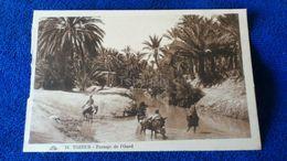 Tozeur Passage De L'Oued Tunisia - Tunisia