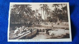 Tozeur La Grande Berka Tunisia - Tunisia