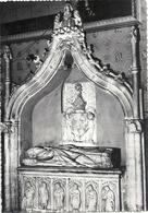 CPM . St-JEAN-DE-MAURIENNE . LA CATHEDRALE . TOMBEAU D'OGER DE CONFLANS .  CARTE NON ECRITE - Saint Jean De Maurienne