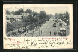 AK Wien, Ausstellungs-Strasse Im Prater Mit Strassenbahn - Tramways