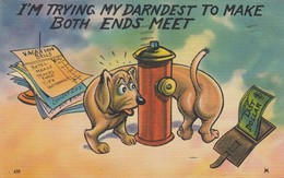 """Dachshund Wrapped Around Fire Hydrant, Bills, Last Dollar, """"Trying To Make Both Ends Meet"""", PU-1945 - Chiens"""