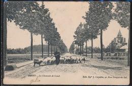 AALST   LA CHAUSSEE DE GAND - Aalst