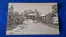 Heavy Snow-Fall Near General Post-Office Simla India - India
