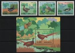Moldawien 1996 - Mi-Nr. 205-208 & Block 8 ** - MNH - Vögel / Birds - Moldawien (Moldau)