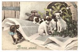 CHIENS Sur Un Journal - Bonne Année - Hunde