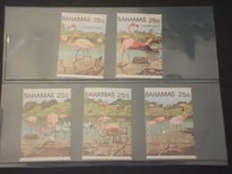 BAHAMAS - 1982 FENICOTTERI 5 VALORI - NUOVI(++) - Bahamas (1973-...)