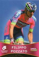 Cyclisme, Filippo Pozzato - Cyclisme