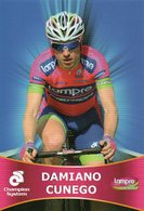 Cyclisme, Damiano Cunego - Cyclisme
