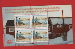 Groenland °°  1996 Bloc 11 Handicapés (WP18) - Groenland
