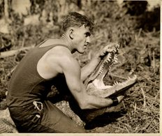 CROCODILE COCODRILO Krokodil 25*20 CM Fonds Victor FORBIN 1864-1947 - Fotos