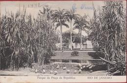 Bresil Brazil Brasil Rio De Janeiro - Parque Da Praca Da Republica Brazilie RARE CPA 1907 - Rio De Janeiro