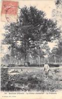 """ARBRE Tree - 27 - Environs D'EVREUX : Le Chêne Chandelier : """" Le FIDELAIRE """" - CPA - Bome Boom Albero árbol - Bäume"""