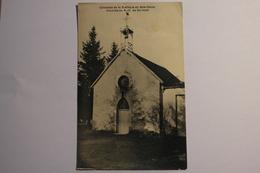 Cpa Collection De La Basilique Du Bois Chenu Chapelle De ND De Bermont - NAS10 - Autres Communes