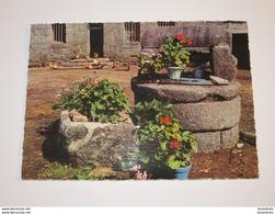 REN029 -  Cours De Ferme Bretonne Puit     ( éditions éditeur Jean Audierne N° 20352 - France