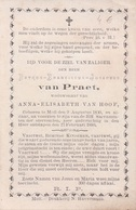 Doodsprentje Petrus Franciscus Josephus Van Praet (x Van Hoof ) ° Mol Moll 1800 - 1880 - Images Religieuses