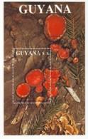 Guyana 1989 / MiNr. Block 37 O Used (mit 2484) / Pilze - Zinnoberroter Kelchbecherling - Guyane (1966-...)