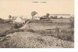 ROSéE   Les  Ruelles. - Florennes