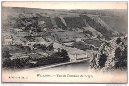 Belgique - NAMUR - WAULSORT - Vue Du Domaine De Freyr - Autres
