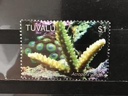 Tuvalu - Steenkoralen (1) 2006 - Tuvalu