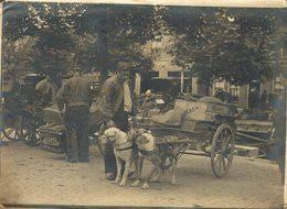 ATTELAGE CHIEN HONDENKAR J F LENS OOSTZAAN ZAANDAM NEDERLAND  21*16 CM Fonds Victor FORBIN 1864-1947 - Fotos