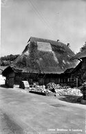 Letztes Strohhaus In Lenzburg - AG Argovia