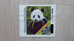 """HANUTA - Sammelbild Nr. 19 (Pandabär)  Für Das Album """"Geschützte Tiere"""" Von 1985 - Sonstige"""