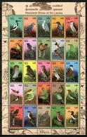 Sri Lanka 2003 Ceylán / Birds MNH Vögel Aves Oiseaux / Cu13722  41 - Pájaros