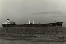 FANNY +- 14 * 10  CM BARCO BOAT Voilier - Barcos