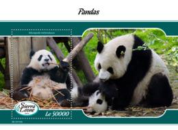 Sierra Leone 2019 Fauna Pandas S201903 - Sierra Leone (1961-...)