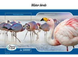 Sierra Leone 2019 Fauna  Water Birds  S201903 - Sierra Leone (1961-...)