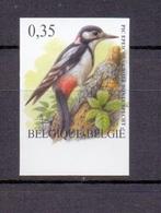 3162 Grote Bonte Specht Buzin  Ongetand 2003 - Belgique