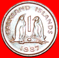 + PENGUINS (1974-1992): FALKLAND ISLANDS ★ 1 PENNY 1987! LOW START ★ NO RESERVE! - Falkland Islands