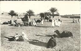 (SCENES ET TYPES ) UNE HALTE DANS LE DESERT. 1165 - Algeria