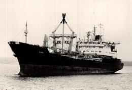 KUNDA +- 14 * 10  CM BARCO BOAT Voilier - Barcos